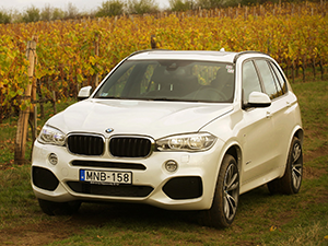 BMW X5 5 дв. внедорожник F15
