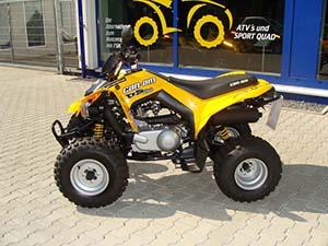 BRP DS спортивный 250