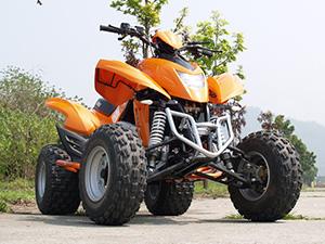 Dinli DL 904 спортивные DL 904
