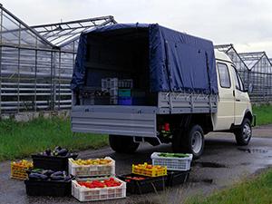 ГАЗ Газель 2 дв. борт-тент 3302