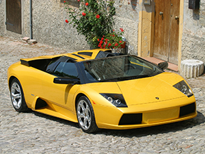 Lamborghini Murcielago 2 дв. родстер Murcielago Roadster