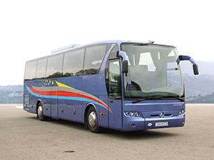ЛАЗ ЛАЗ 5208 2 дв. туристический 5208 (НеоЛАЗ)
