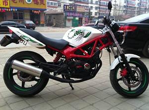 Lifan LF250-19 спортбайк LF250-19