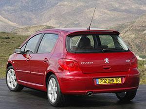 Peugeot 307 5 дв. хэтчбек 307