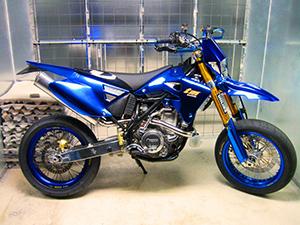 TM Racing EN 250 эндуро EN 250F