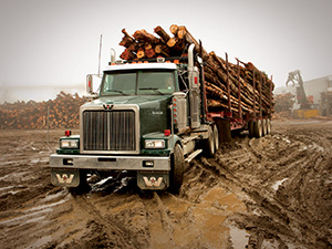Western Star 6900 2 дв. лесовоз Logging 6900 XD